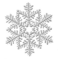 Snowflake | 10 Christmas Beauty and Hair Tips | SalonAddict.co.uk